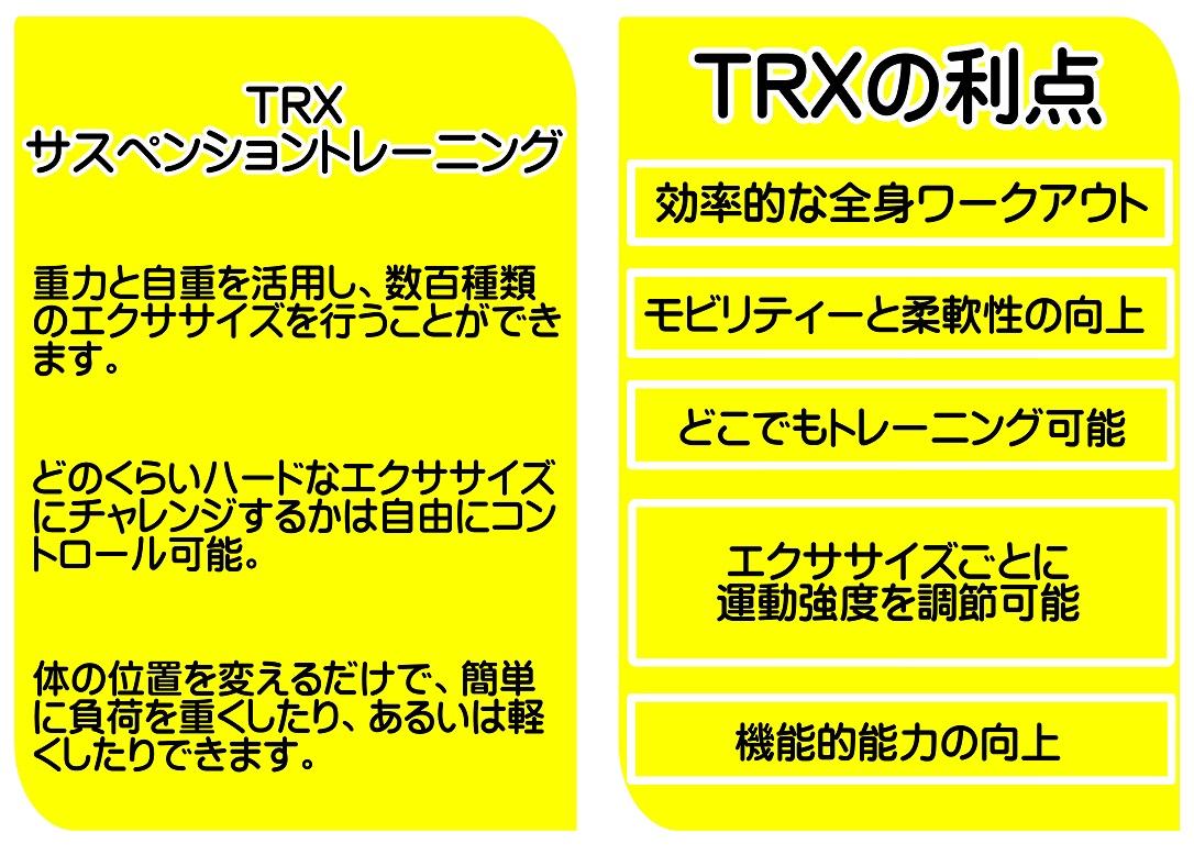 TRXχ - コピー