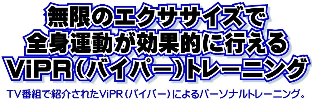 ViPR - コピー